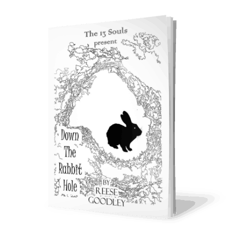 Down the Rabbit Hole by Reese Goodley
