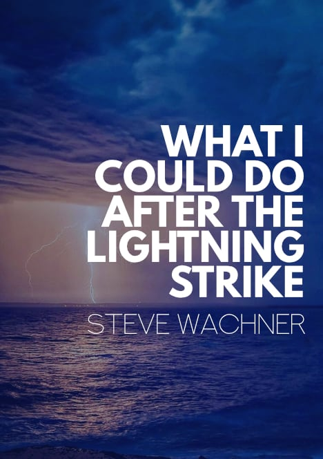 What I Could Do After the Lightning Strike by Steve Wachner